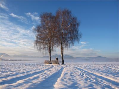 Sport & Freizeit im Winter